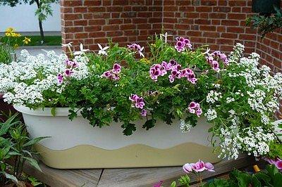 Květináče na balkon
