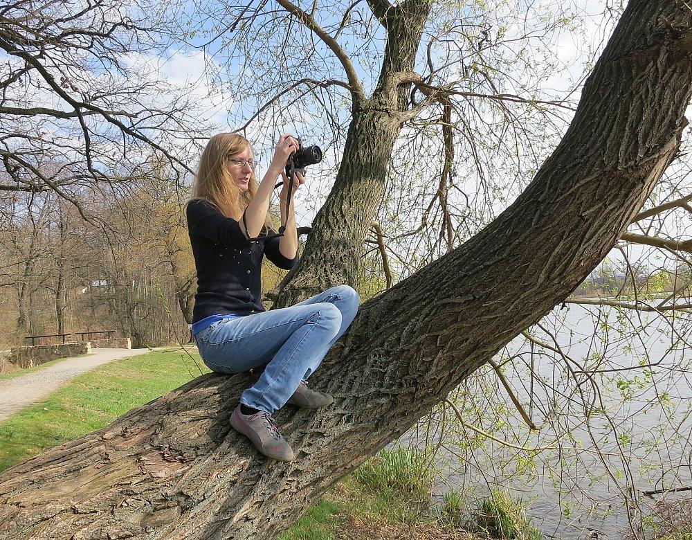"""Fotografická soutěž na téma """"Pražské stromy"""""""