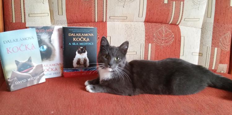 Dalajlamova kočka - soutěž o 3 balíčky po 3 knihách