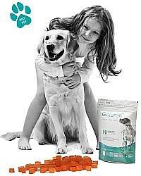 Soutěž o veterinární přípravky a tričko od Aktivní zvíře