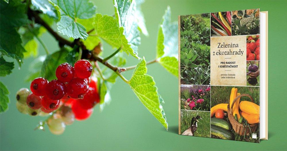 Soutěž o 3 výtisky knihy Zelenina z ekozahrady