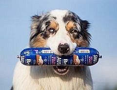 Soutěž o chutné salámky pro psy značky Brit Premium