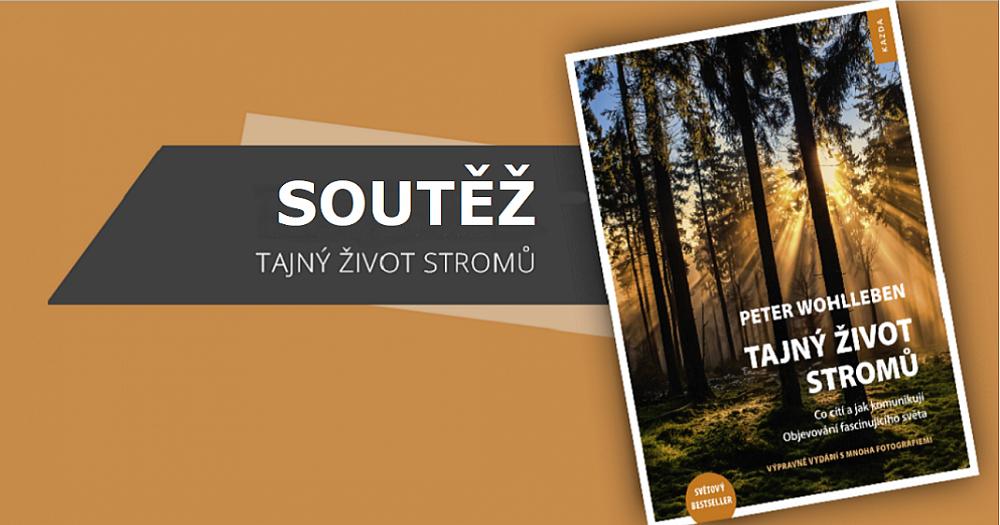 Soutěž o 3 výtisky knihy Tajný život stromů