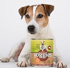 Soutěž o balíčky přírodního krmiva pro psy Yoggies