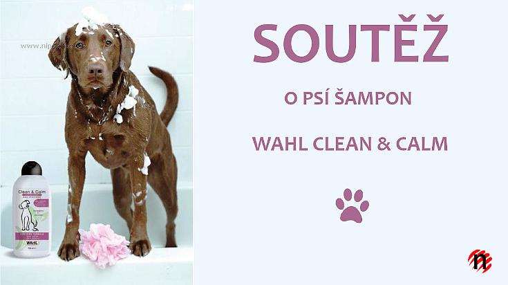 Soutěž o šampon pro psy Wahl Clean & Calm