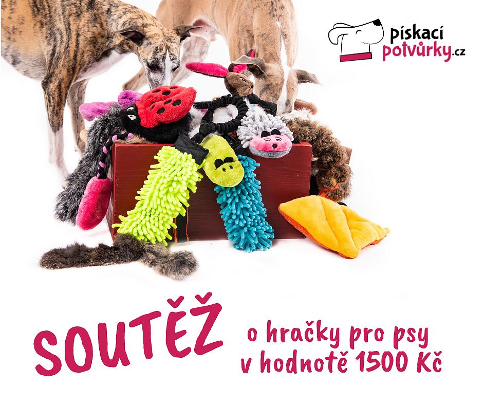 Vyhrajte české hračky pro psy v hodnotě 1500 Kč