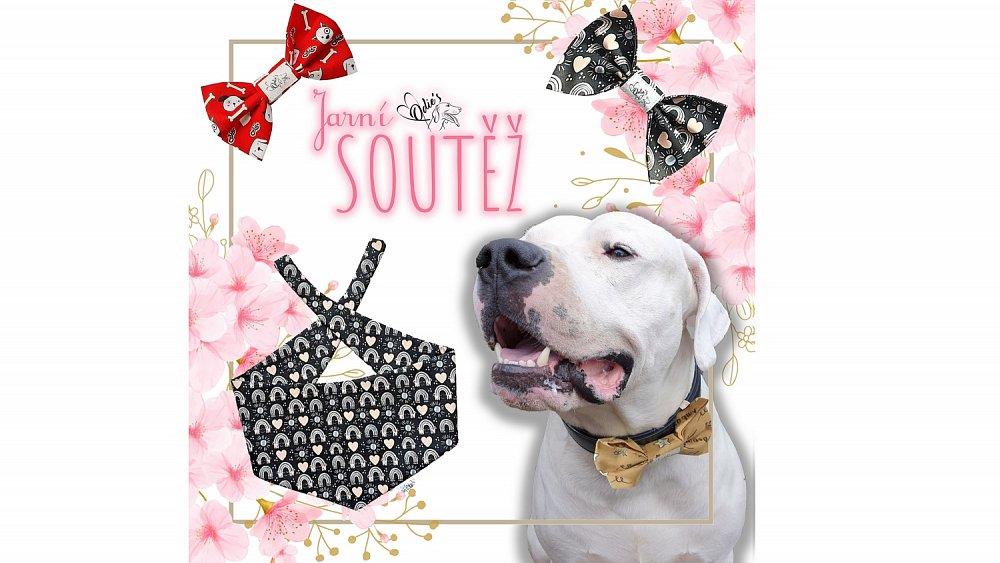 Soutěž o motýlky a šátek pro psy